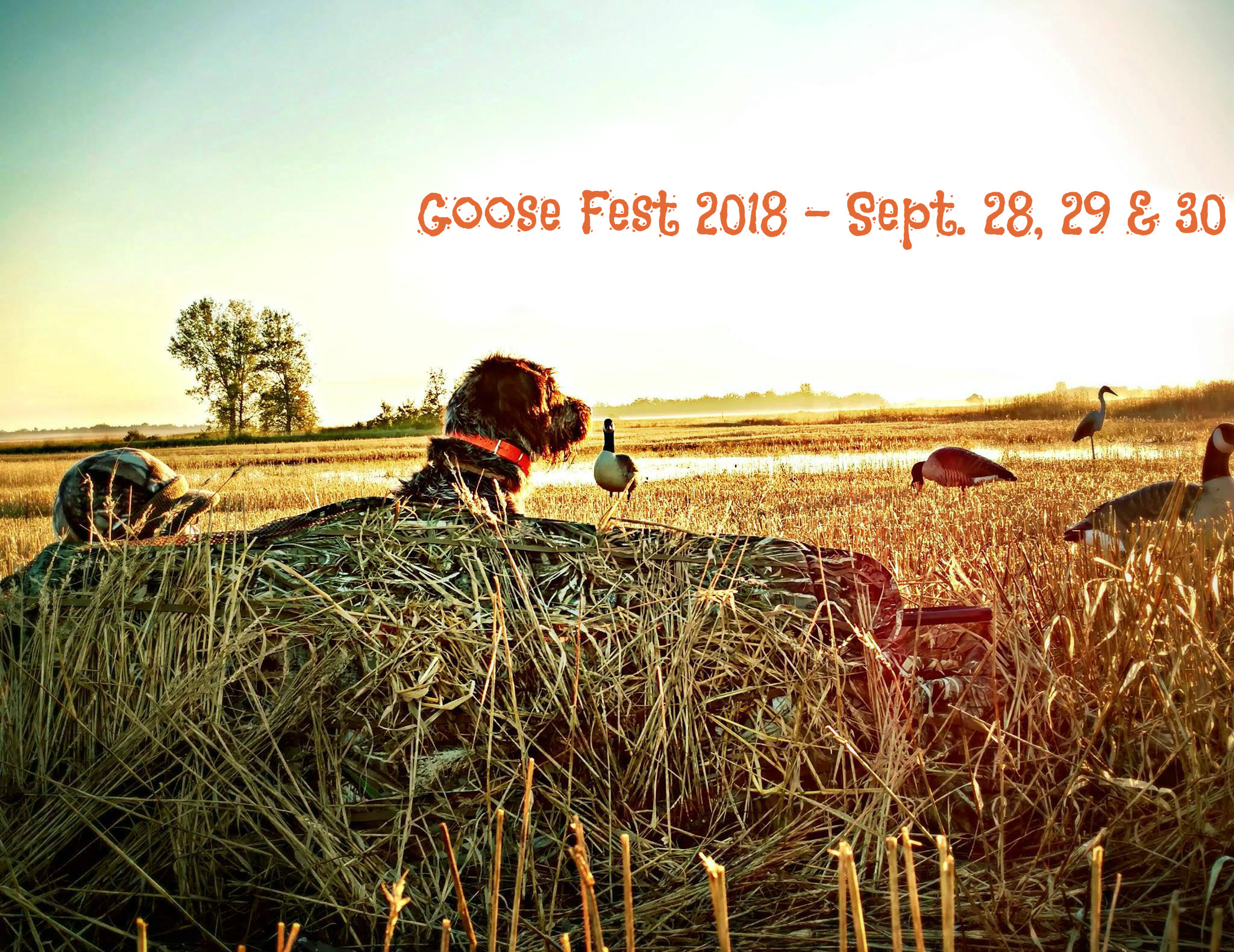 Book Signing @ Goose Festival in Middle River, MN